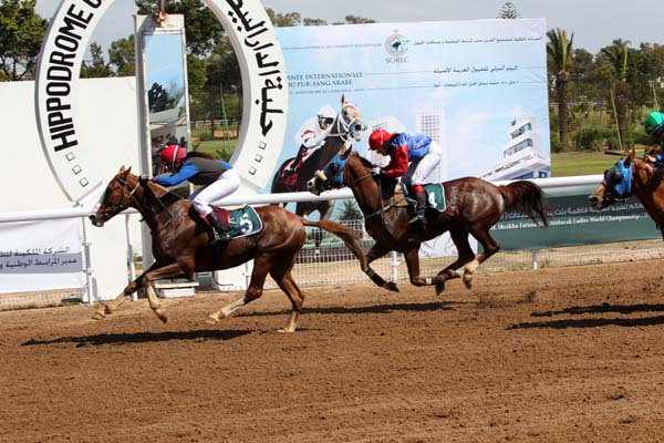 arabian flat racing in morocco