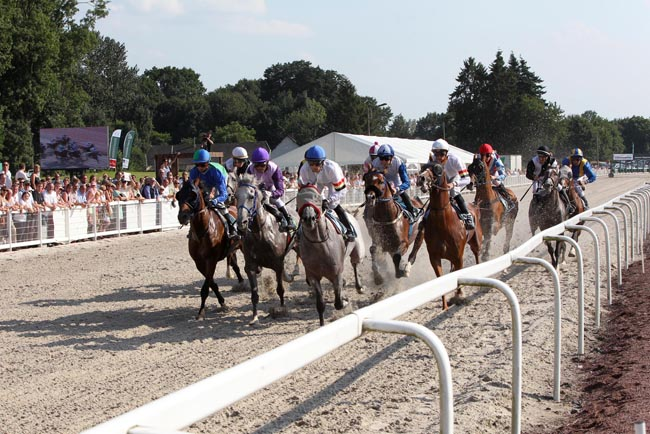 The large field of 13 horses in action in the race last year