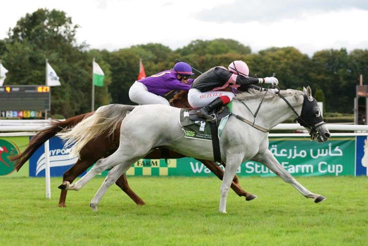 Nil Ashal wins Wathba Stud Farm Cup in Switzerland