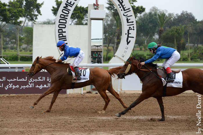 South Korean lady jockey L. Keumjoo wins the fifth round ofHH Sheikha Fatima Championship in Morocco