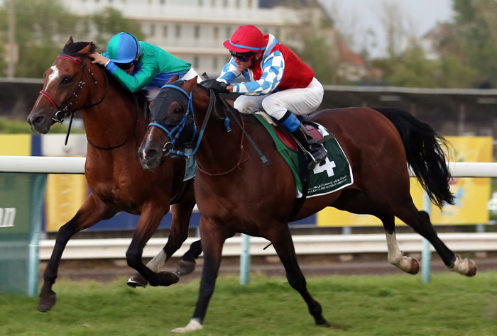 Athlete Del Sole in Sheikh Zayed Cup