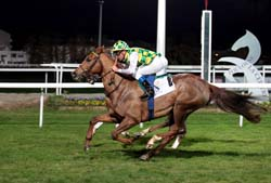 Mabrooka wins Sheikh Zayed Cup in Toulouse