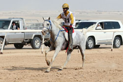 Al Mazrouei wins Yas Ride for Private Owners